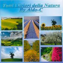 tutti-i-colori-della-natura